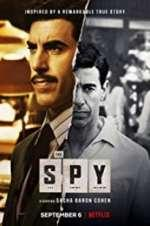Watch The Spy Online