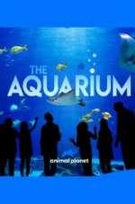 Watch Alluc The Aquarium Online